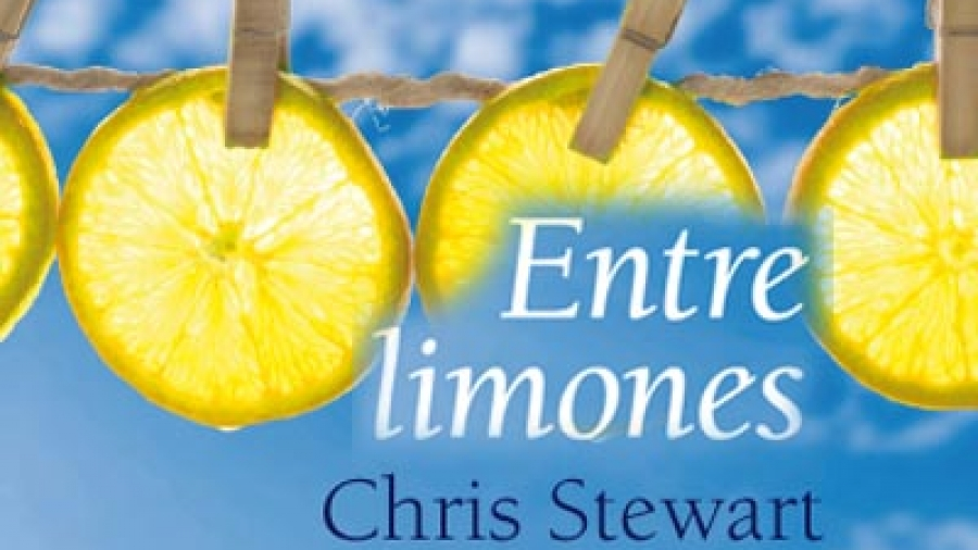 Image result for entre limones