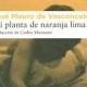 d_planta2