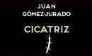 cicatriz-2